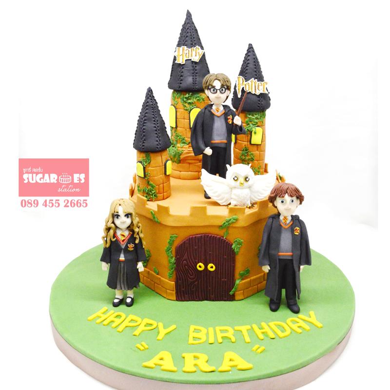 Harry potter cake 03